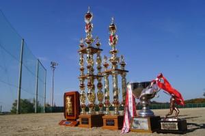 2014年桑田杯